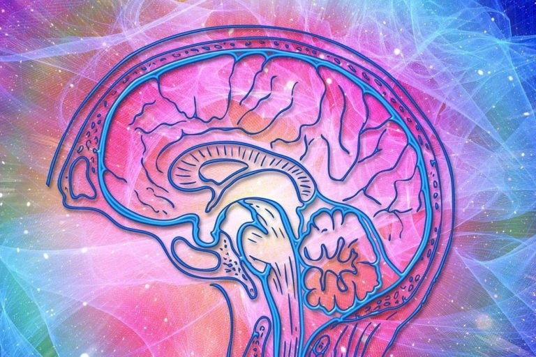 Psicosomatica-psicologa-padova