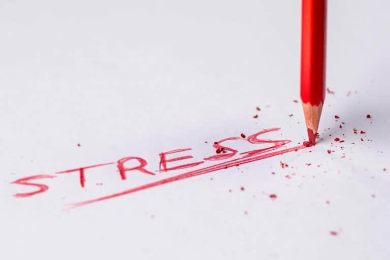 stress-ansia-psicologa-padova.